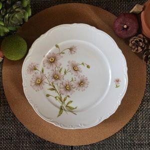 Vintage Mitterteich BavariaGerman Porcelain Plate